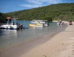Research vessels and JCU's Orpheus Island Research Station